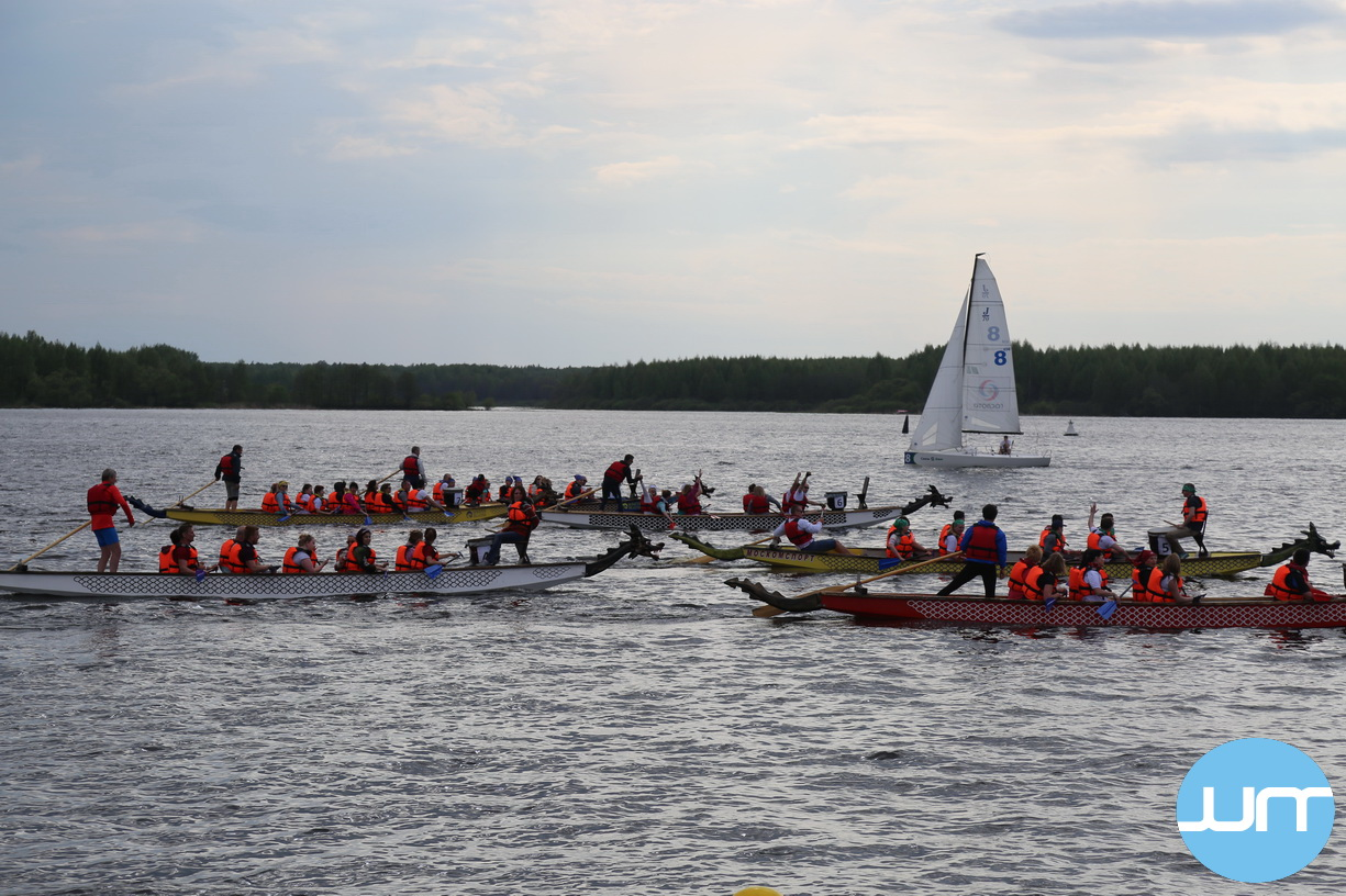 Активный отдых на лодках драконах